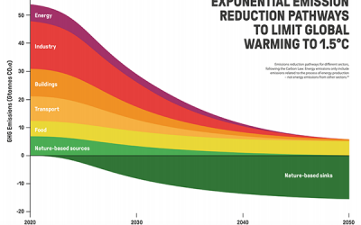 New 1.5°C Business Playbook will help businesses take exponential climate action