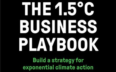 Heavyweight behind new climate guide for companies (Swedish)